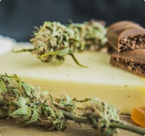 Best Marijuana Dispensary Payroll Service