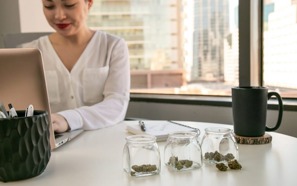 How Cannabis Businesses Can Benefit From Outsourcing Payroll