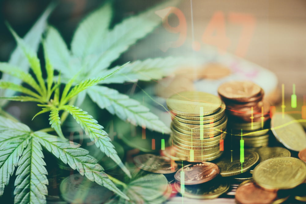 Where can I find trustworthy marijuana HR consulting services?